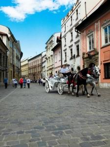 Kutsche in Krakau (Tim Wullbrandt)