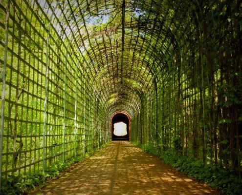 Das Ende der Welt - Schlosspark Schwetzingen - Tim Wullbrandt