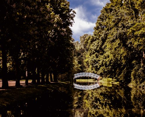 Brücke - Schlosspark Schwetzingen - Tim Wullbrandt